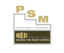 PSM-Safety-Logo
